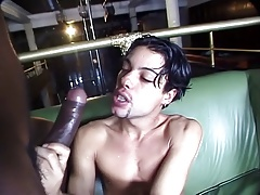 Super Hot CD and twink