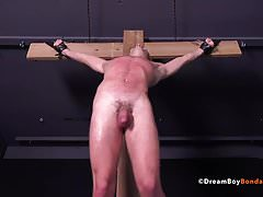 Gay Muscle Bondage Twinks Take Intense Whipping BDSM Hung